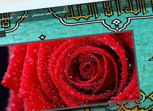 همکاری در پروژه؛ وب سایت شخصی دکتر سلطانی نژاد